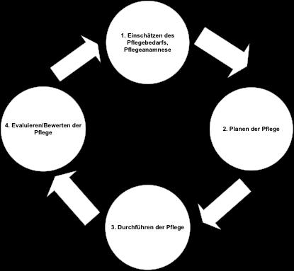 Diagramm Ablauf Pflegeprozess Pflegedienst Turmalin