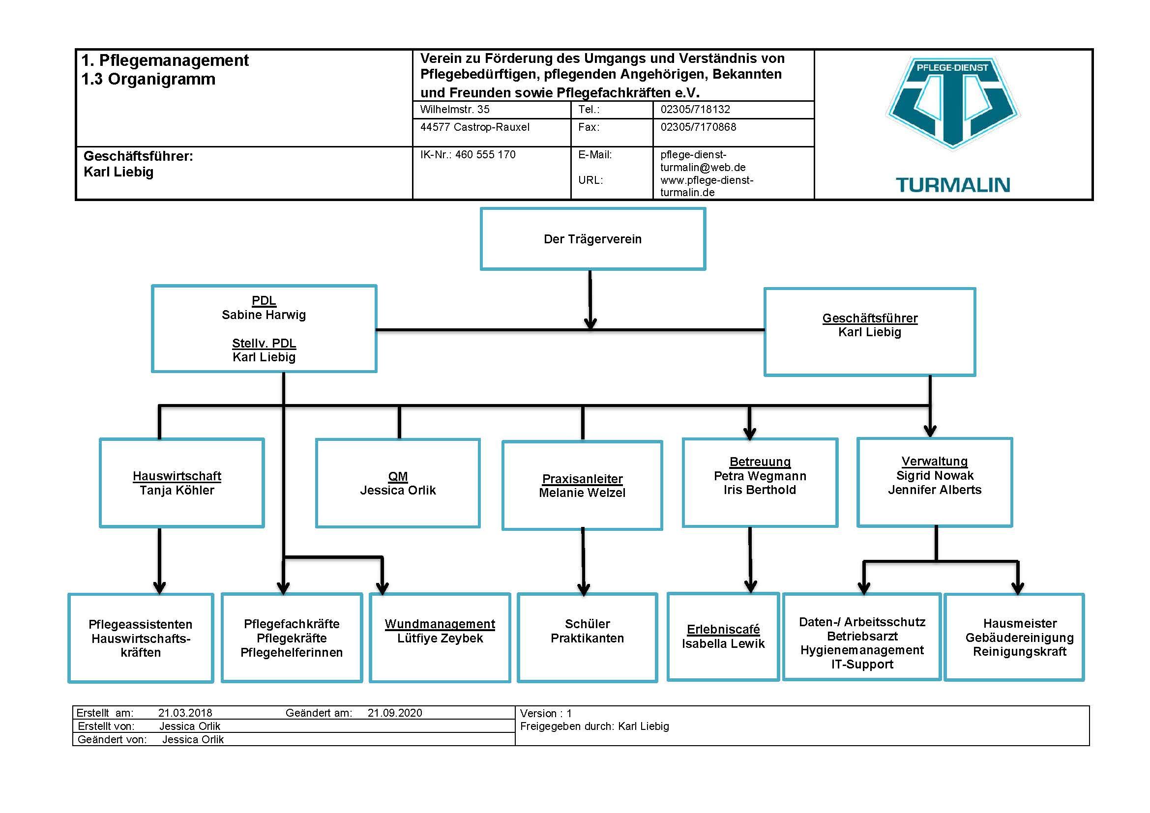 Organigramm Pflege-Dienst Turmalin